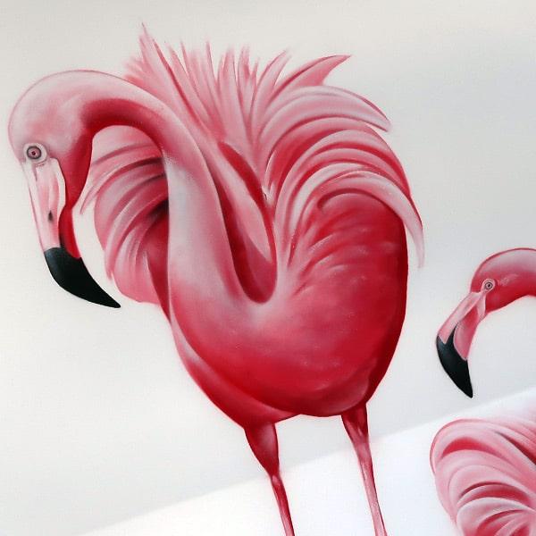 فلامنغو الوردي