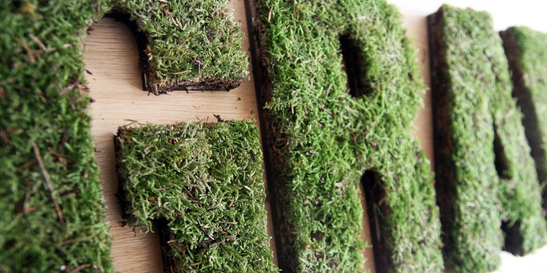 Moss textes et murs